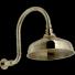 GRAZIA ANTICA RITZ Pomme de douche courbée Vieux bronze